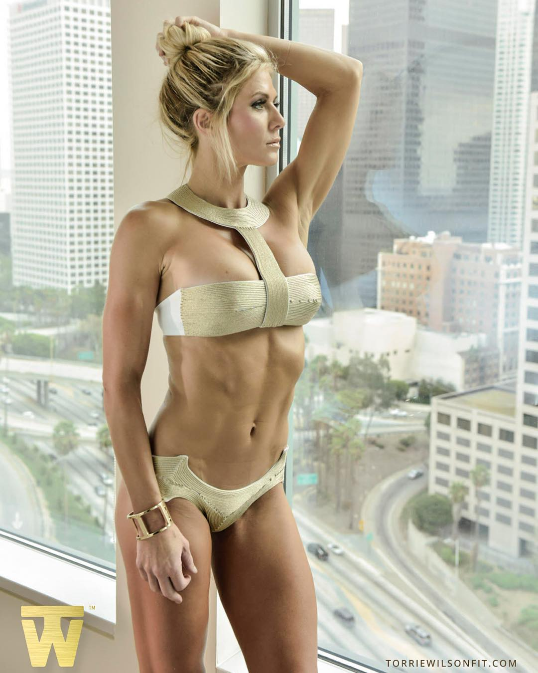 Congratulate, your Torrie wilson strip geisha agree with